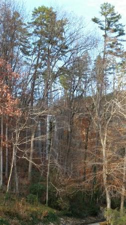 Toccoa Falls, GA: 20151126_155223_large.jpg