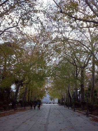 La Ciudad: parque del tajo