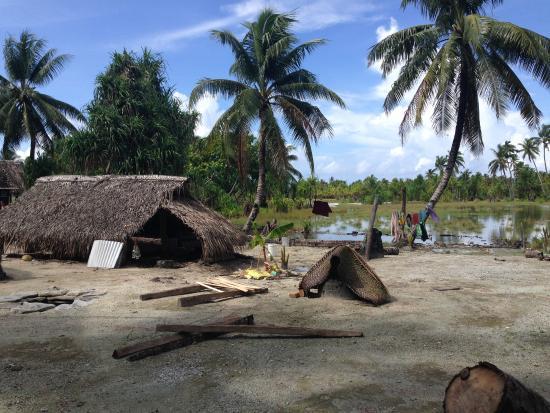 Fenua-ura: Island Home