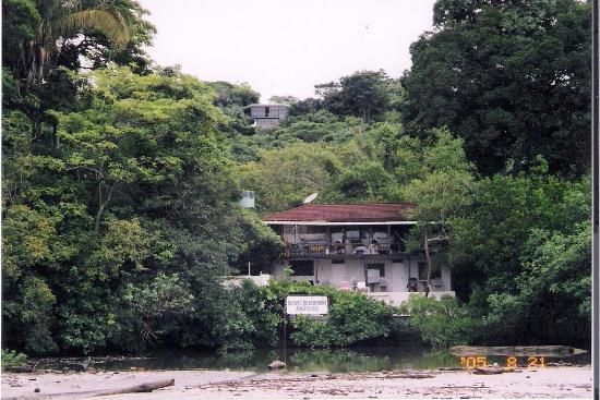 Nature's Beachfront Aparthotel