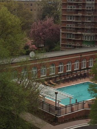Swimming Pool Picture Of Washington Marriott Wardman Park Washington Dc Tripadvisor