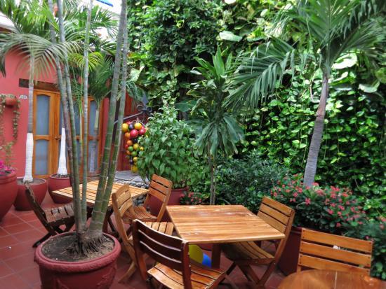 Hotel 3 Banderas: jardins
