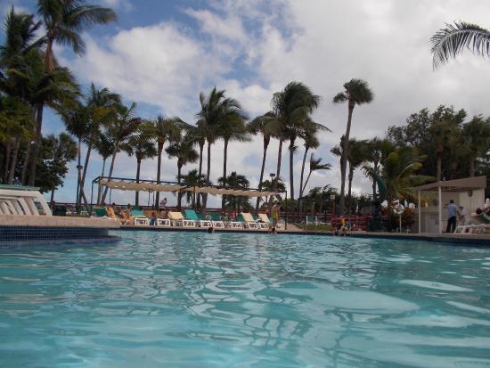 hotel riu plaza miami beach picture of hotel riu plaza. Black Bedroom Furniture Sets. Home Design Ideas