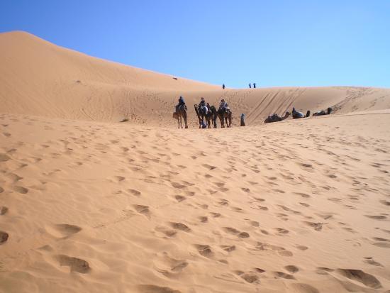 Desert Tours Morocco - Day Trips: Paseo en camello!
