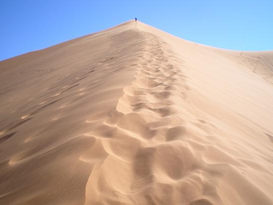 Desert Tours Morocco - Day Trips: La gran duna...subirla todo un reto, y unas vistas maravillosas