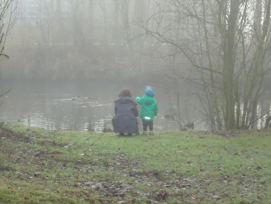 Dalen, เนเธอร์แลนด์: Gleich hinter der Unterkunft
