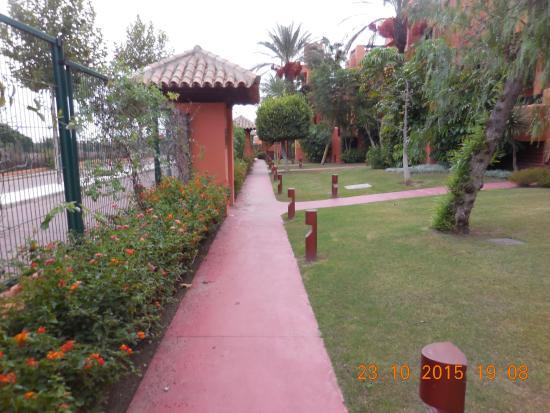 Aparthotel Novo Resort: jardin