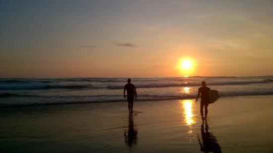 Perfect Sunset School: Surf and Sun