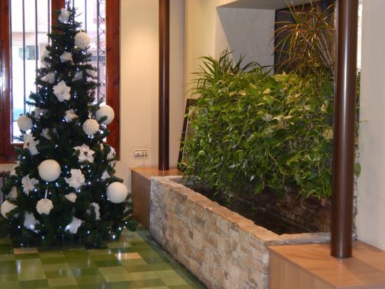 Hotel Jardí: recepcion