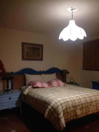 El Zopilote Mojado : habitacion