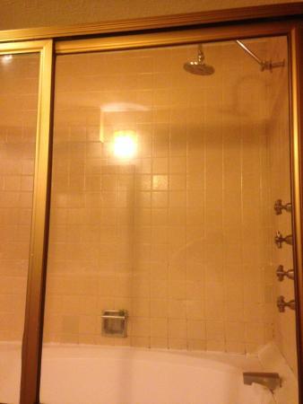 El Zopilote Mojado: baño