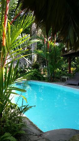 Caribbean Paradise!