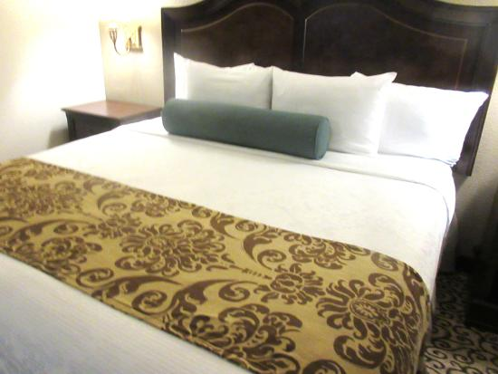 Comfortable King Size Bed, Best Western Plus Inn at the Vines, Soscol Avenue, Napa, Ca