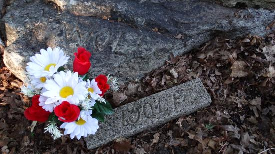 Wayne, Nueva Jersey: Wolf's grave