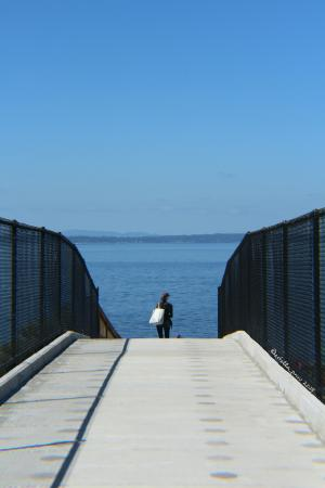 Shoreline, Ουάσιγκτον: Bridge leading down to the beach. (copyright 2015 Estella PNW)