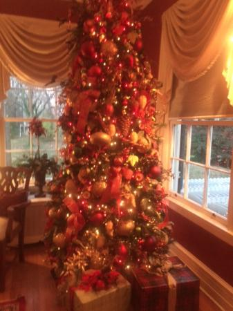 Manor House Tea at Rosemont Manor.: One of the many Christmas Trees