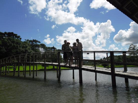 Araucárias Park