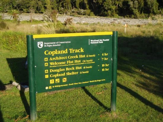 Fox Glacier, Nueva Zelanda: Copland Track