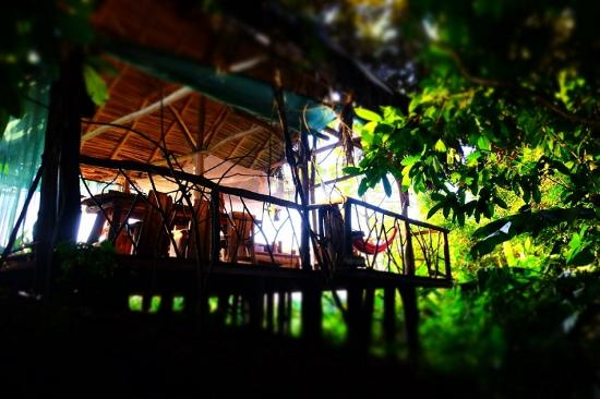 Palma Quemada, Costa Rica: Palenque