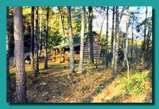 Merveilleux Blue Smoke Mountain Cabins: Moonshine Ridge , Cozy Mountain Cabin