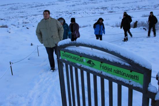 Bifrost, Islandia: Da hinauf?