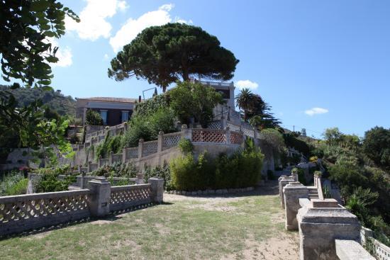 Villa Paola : Vista dal giardino