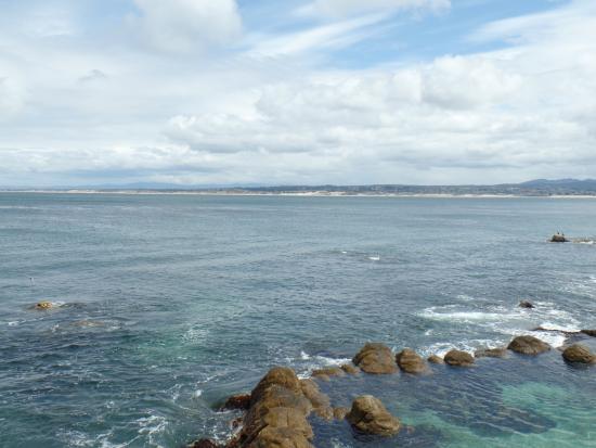 4 Picture Of Monterey Bay Aquarium Monterey Tripadvisor