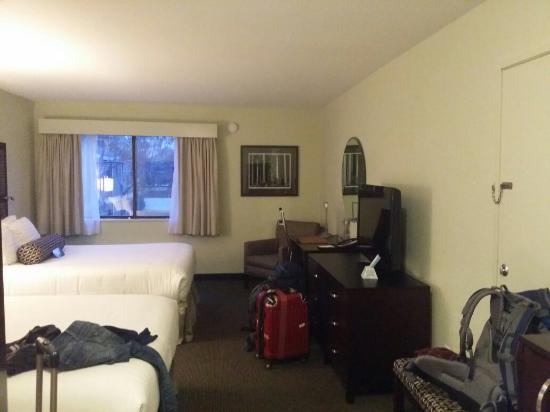 Interior of maple tree inn guest room