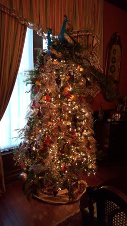 Brunswick Manor: Tree in room