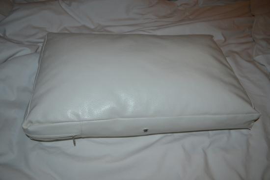 The Paragon Inn: What are these pillows?