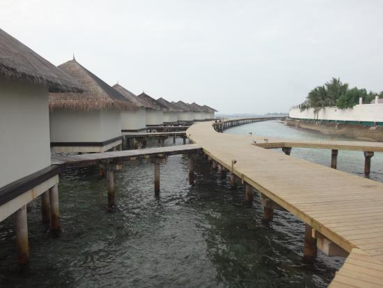 walkway picture of cinnamon dhonveli maldives. Black Bedroom Furniture Sets. Home Design Ideas