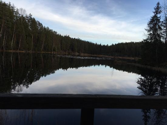 Natura Viva: Nuuksio Forest Lake Trail : photo0.jpg