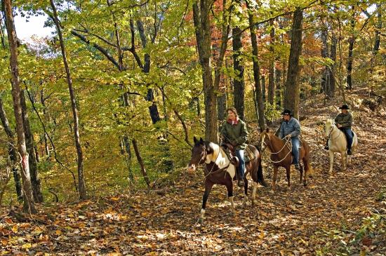Arkansas: Enjoying the fall weather on the horse trails at Vilalge Creek State Park.