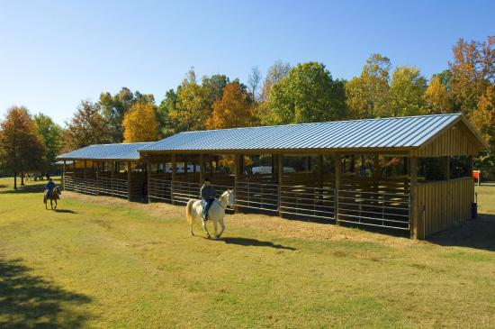 Arkansas: Horse stalls in the equestrian camp