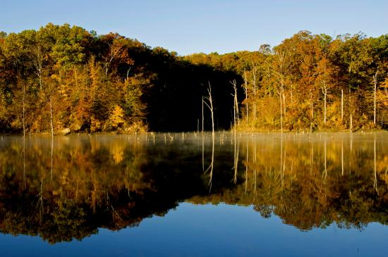 Arkansas: Fall on the lake at Village Creek State Park