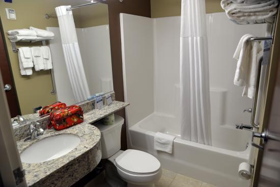 Microtel Inn & Suites by Wyndham Cambridge: Bathroom.