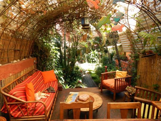 Chez Aina: jardin paisible