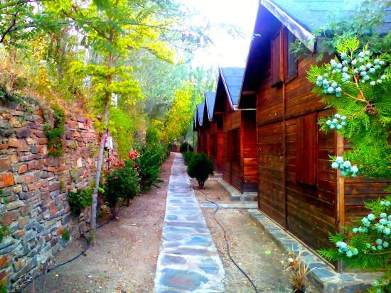 Laroles, Spanyolország: Nuestros bungalows de madera