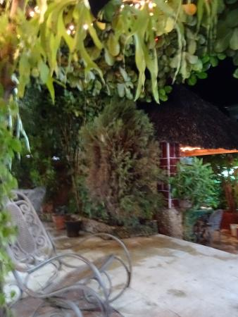 Hostal Digna Aguila: le jardin