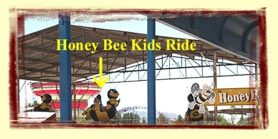 Kid Ride Picture Of Schnepf Farms Queen Creek Tripadvisor