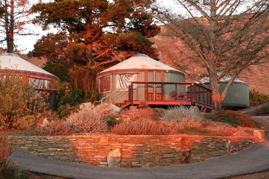Yurt 6 Picture Of Treebones Resort Big Sur Tripadvisor It is frequently praised for its dramatic scenery. yurt 6 picture of treebones resort