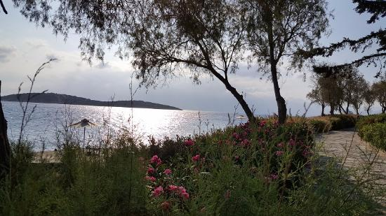 Minos Beach Art hotel: Набережная отеля