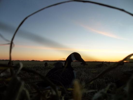 Selkirk, Canada: Sunrise in Manitoba