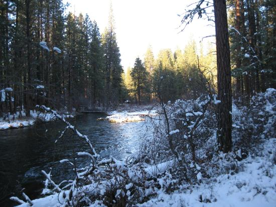 Camp Sherman, Oregón: Metolius River in November