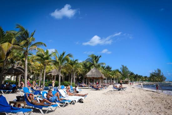 beach Picture of Sandos Caracol Eco Resort, Playa del