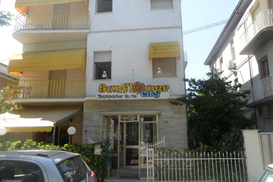 Sunflower City Backpacker Hostel & Bar: Entrada al hotel