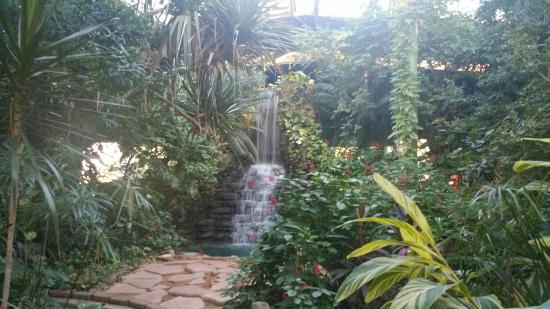 Jardin Picture of Family Garden Inn Laredo TripAdvisor