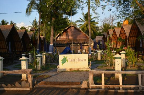 Welcome To Turtle Beach Hotel Gili Air