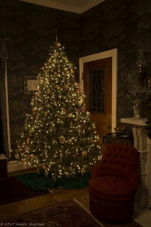 Hanna House Bed & Breakfast: Parlor with Holiday Deocrations up