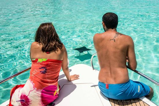 Bora Dream Pictures & Lagoon Tours : Meeting an eagle ray in middle of shallow emerald water
